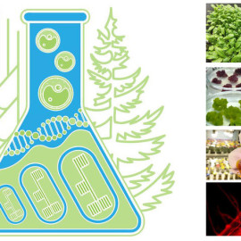 conference Cytobiology and Plant Biotechnology